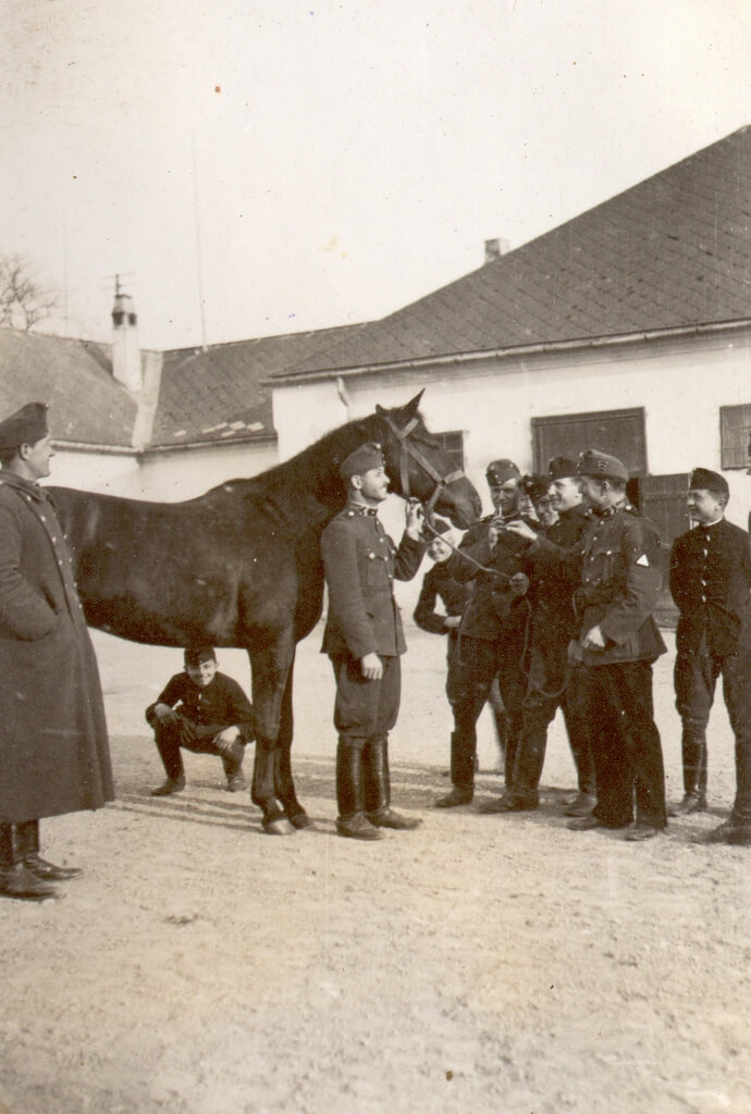Csoportkép lóval