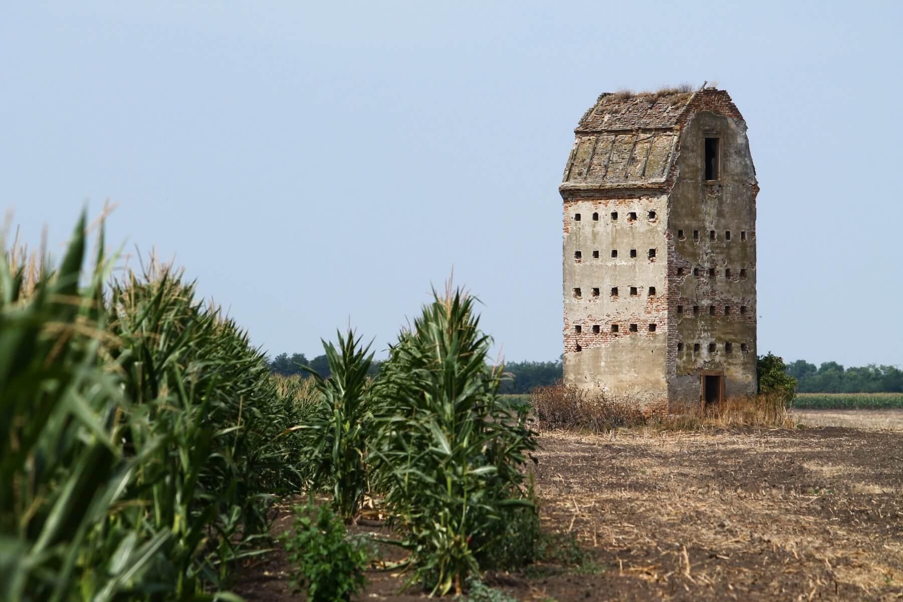 Zabsiló torony