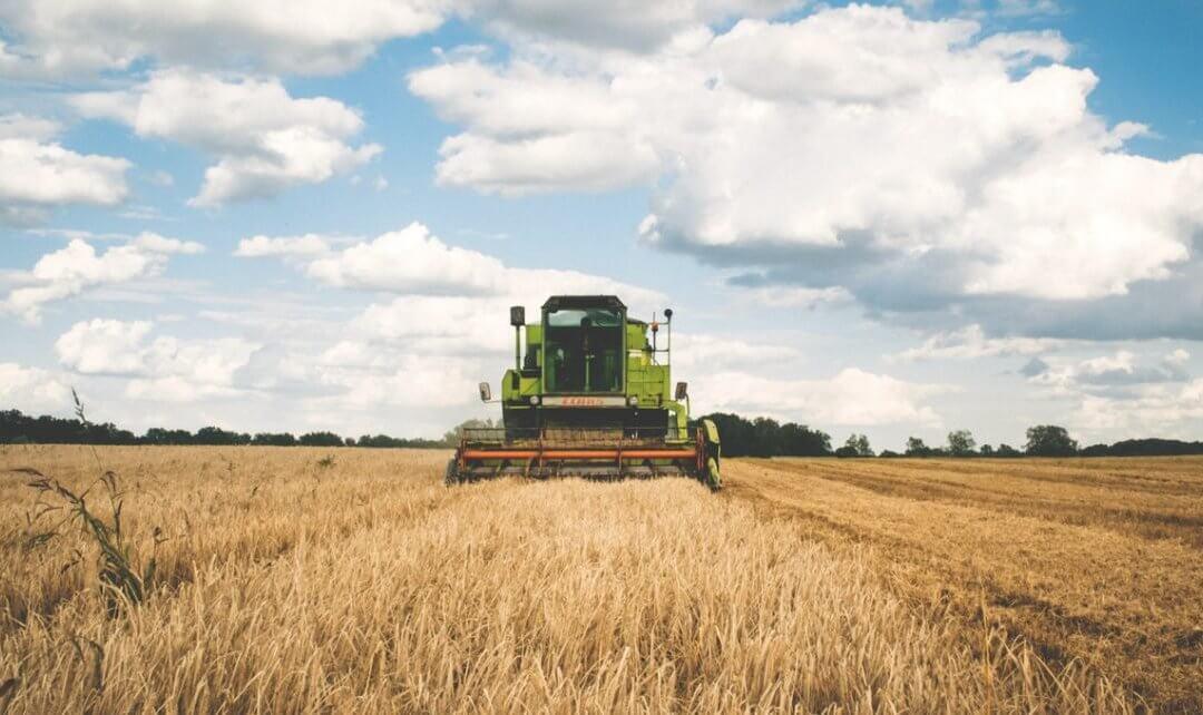 Papp István Tibor: a mezőgazdaság egy új időszámítás előtt